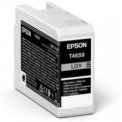 Epson - UltraChrome Pro Original Gris claro 1 piezas