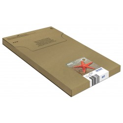 Epson - Multipack 4-colours 603 EasyMail