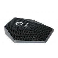 AVer - 60U8D00000AE accesorio para videoconferencia Micrfono Negro