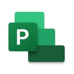 Microsoft - Project Standard 2021 Completo 1 licencias Plurilinge