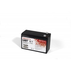 Salicru - UBT 12/7 - Batera AGM recargable de 7 Ah