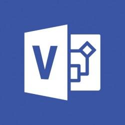 Microsoft - Visio 2019 1 licencias Plurilinge